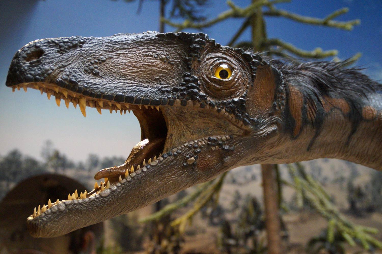 台北高CP值室內遛小孩景點:去台博館土銀展示館看恐龍