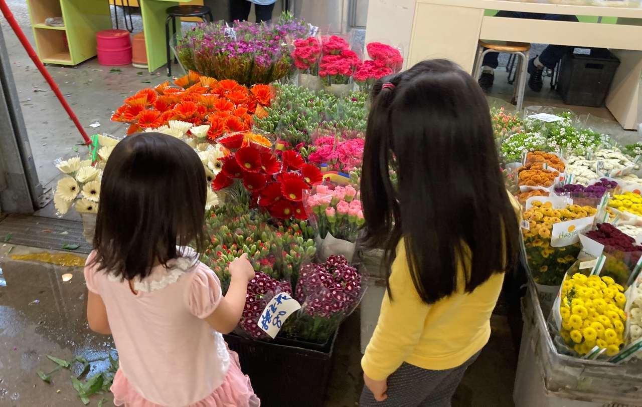 【蒙特梭利工作:插花】台北內湖花市超適合親子去買花